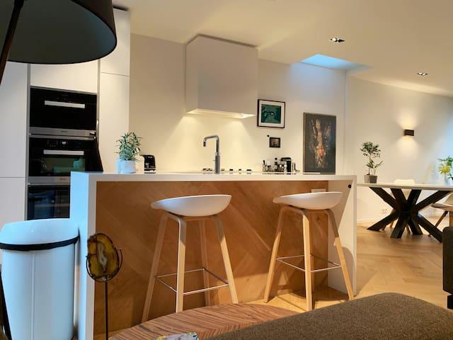 Modern Luxurious Villa in City Center / Jordaan