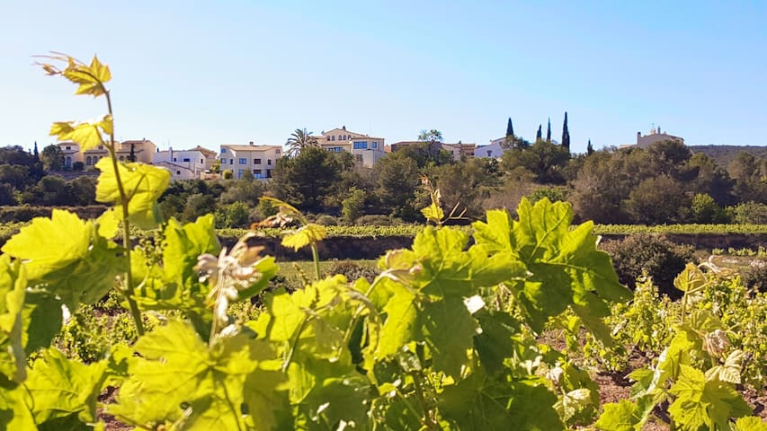 Light, bright & spacious with sunkissed sea views - Sant Pere de Ribes - บ้าน