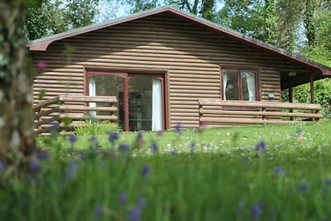 Rural lodge wooded valley at the heart of Cornwall