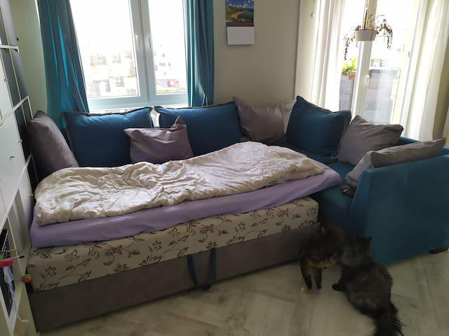 Nocleg na sofie dla kobiety w pokoju przejściowym