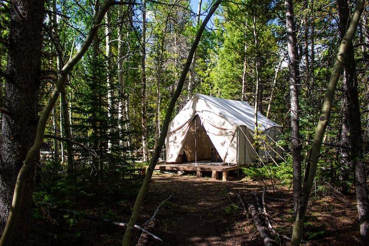 Cozy Shepherds Tent in Aspen Grove near RMNP