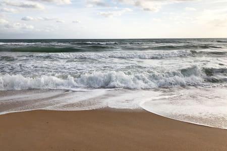 Flagler Beach apartment with gorgeous ocean views