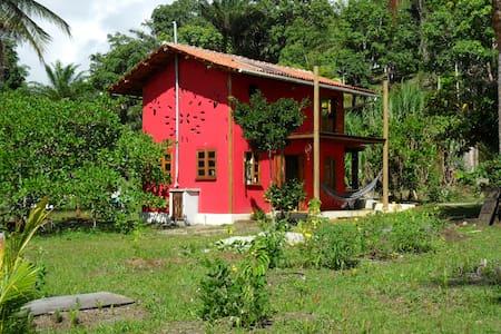 Eco-Loft (Casinha do Tiê) - Serra Grande