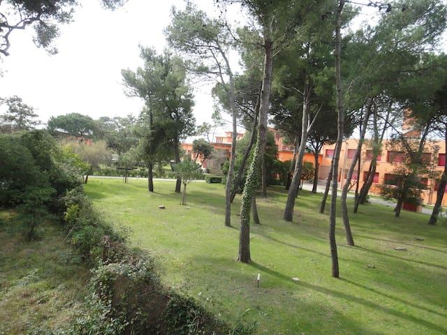 PALAZZINA SUL MARE - Marina di Pisa-tirrenia-calambr - Rumah