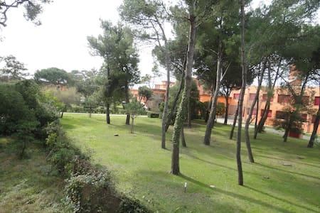PALAZZINA SUL MARE - Marina di Pisa-tirrenia-calambr - Casa