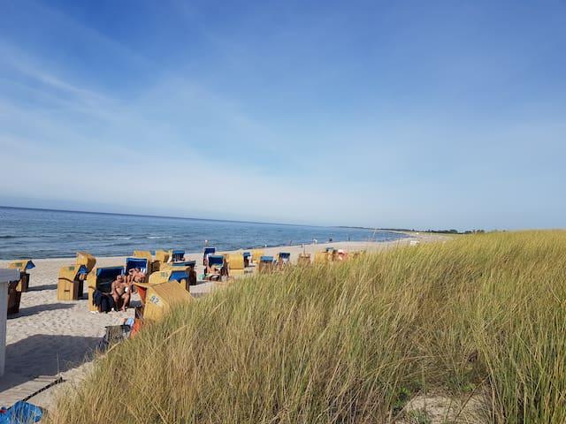 Dierhagen Strand in 5 km Entfernung