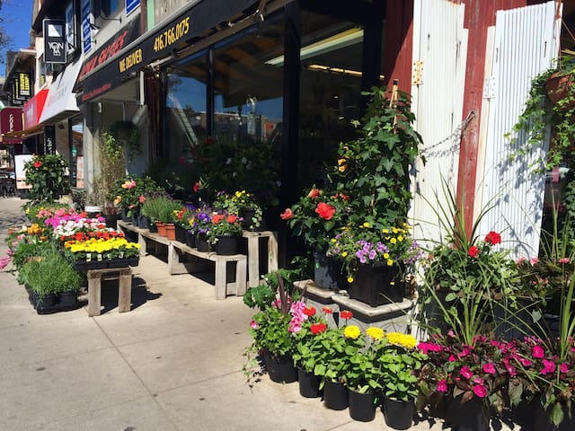 Our neighbourhood is wonderful for walking--you're steps from flowers, fruits, veggies, cafes and more