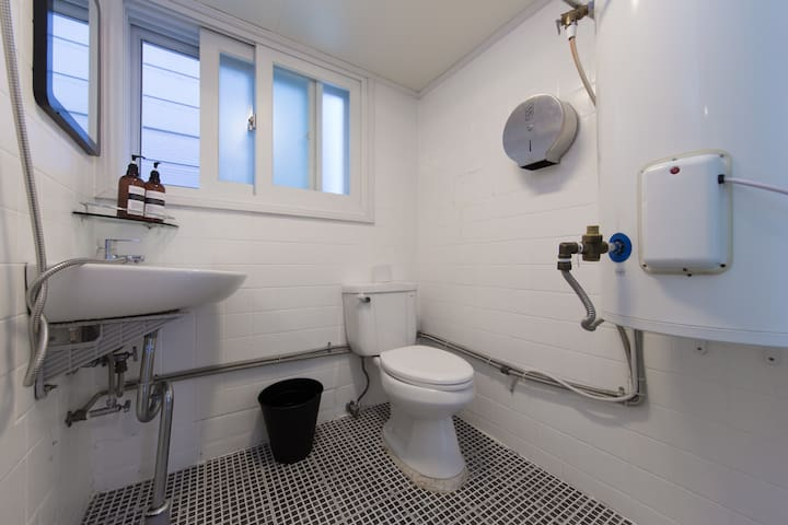 Old but clean Toilet and Shower room.