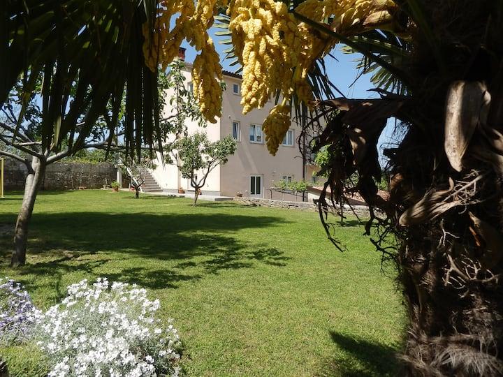 Apartman Greta, okružen prirodnim ljepotama Istre.