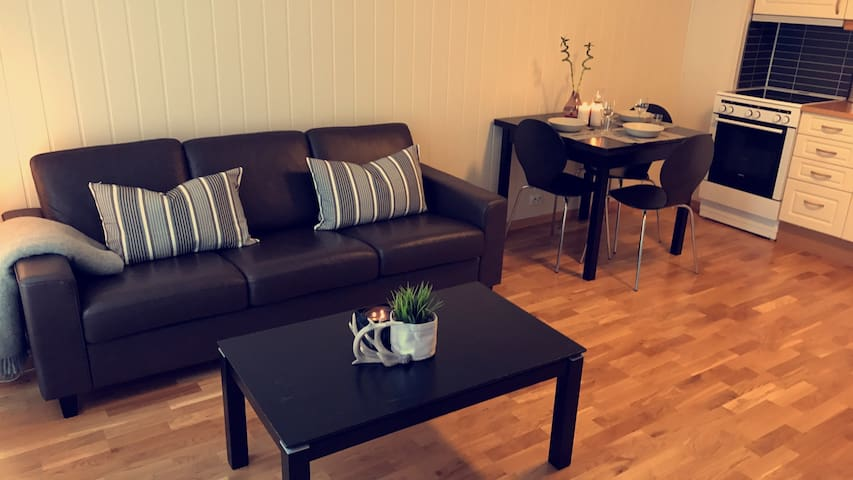Apartment in the centre of Longyearbyen