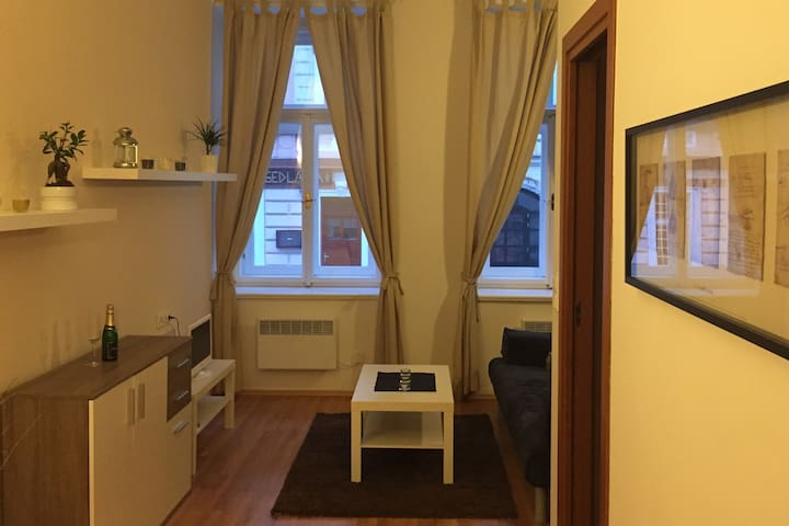 Cozy Apartment – Great location, Heart of Prague - Prague - Apartment