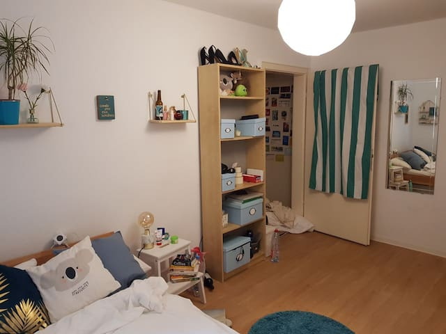 Month rental in shared apartment