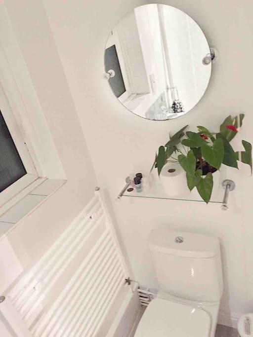 Ensuite shower & WC.