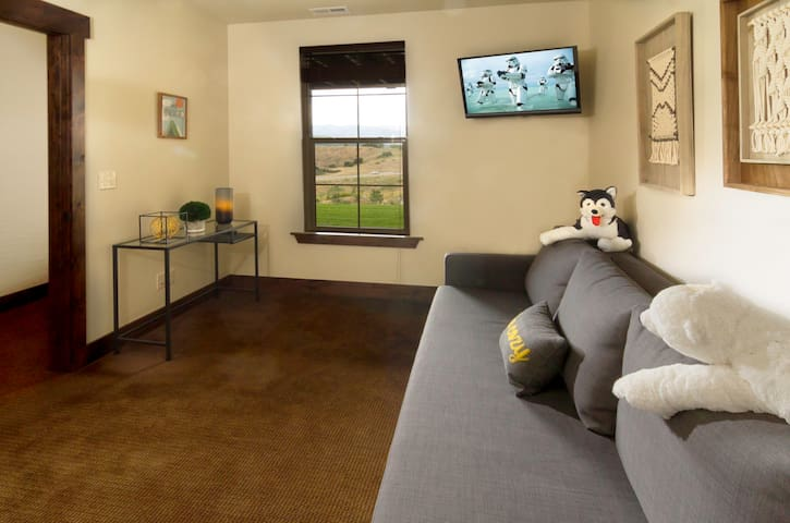 Third bedroom with sleeper sofa, desk, and TV with Amazon FireTV stick (to access content, please log in with your Amazon account, if desired)