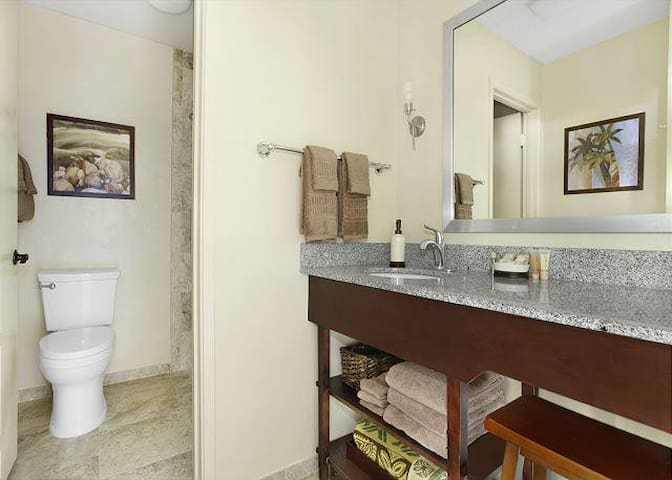 Spacious spa like walk in shower & toilet separate from roomy dressing/powder room for privacy