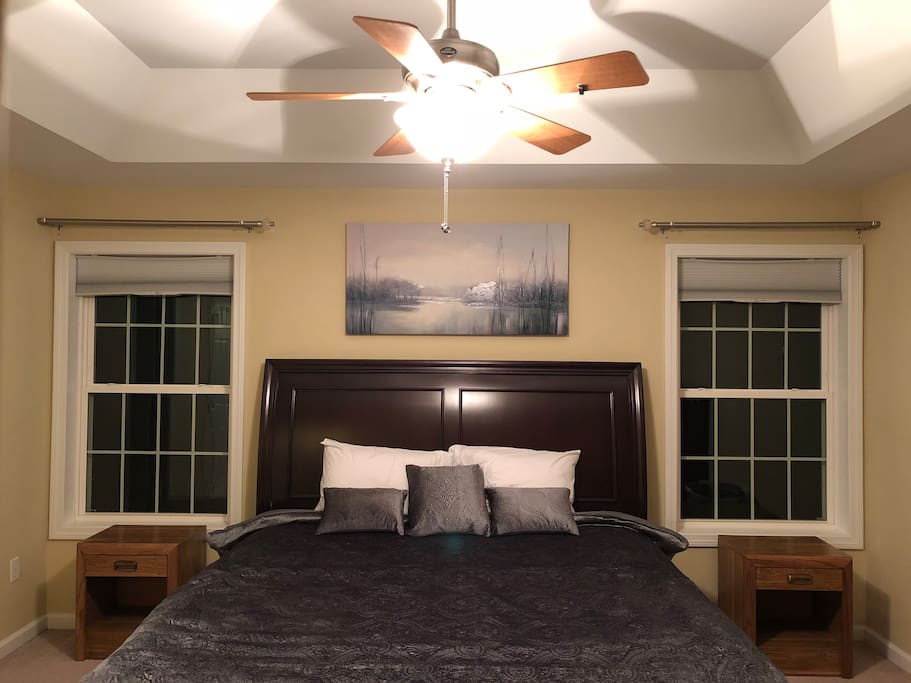 Master Bedroom featuring a King Size bed and a tray ceiling w/ lots of room to move around.