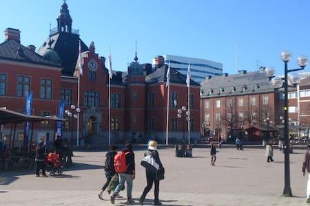 centralt Umeå vid älven