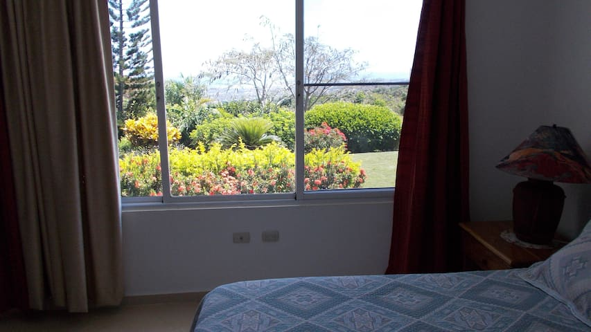 Apt. 1 - bedroom - view