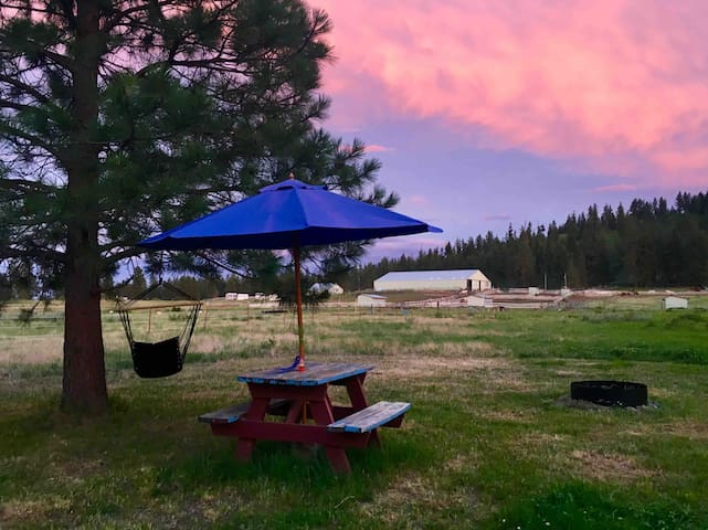 Authentic Ranch Campsite #4 With Hammocks n Views!
