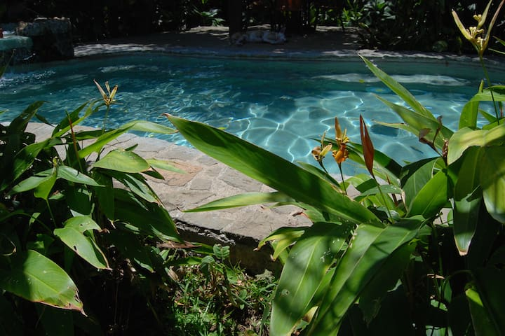 Best location in Escazu/heated pool - San Rafael - Apartment