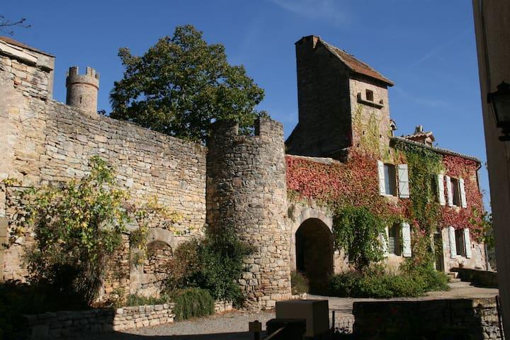 Gites du château - Milhars - Dům