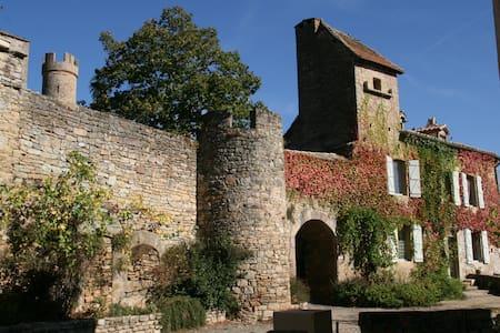 Gites du château - Milhars - Haus