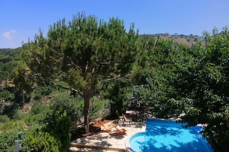 Chalet with private pool in Bmahray - Shouf cedars