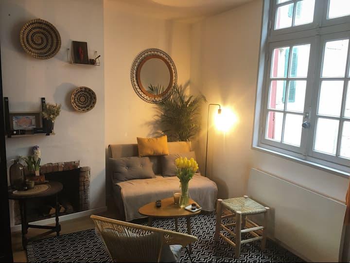 Charmant appartement T2,  ultra-centre de Bayonne