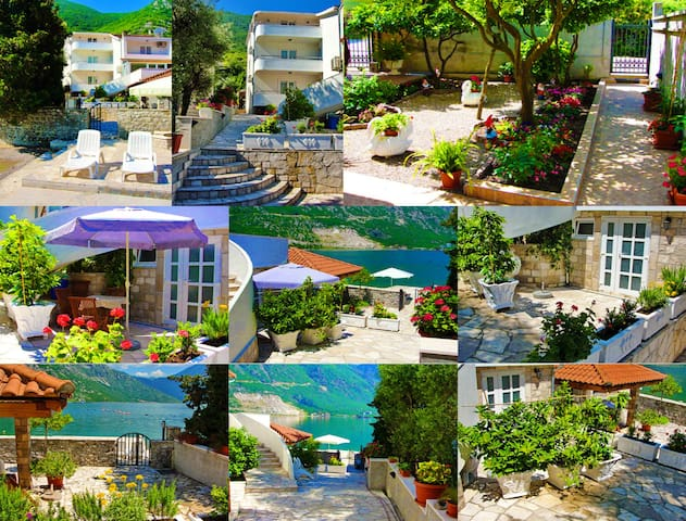 BEACHFRONT - Charming Studio - Kotor