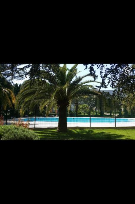Moyenne piscine