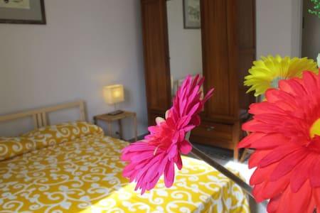ANZIO 5 rooms - Nettuno