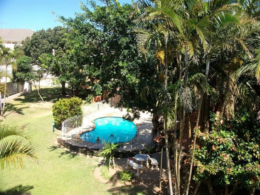 Garden area and swimming pool.