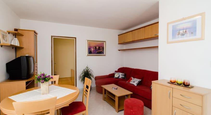 Maximus apartment 2 - Lozica