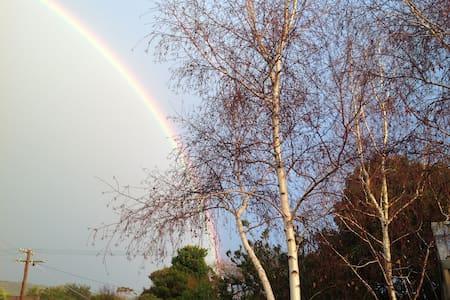 Silver Birches - 羅斯巴德(Rosebud) - 小平房