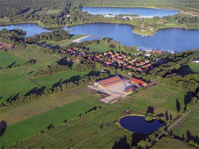 """Ferienreiterhof """"Kleine Mücke"""" direkt am Badesee."""