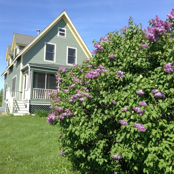 The front of our house in spring.
