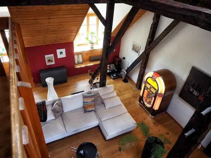 Aussergewöhnliche  Dachwohnung - 25 min von Zürich