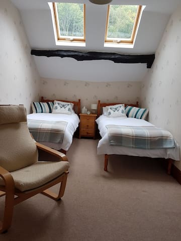 Plasgwyn Riverside B&B Twin room