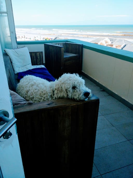 Our private balcony (dog not included:-)