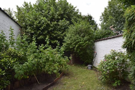 Ixelles : maison gavec jardin