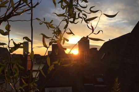 akosART unter&über den Dächern der Kölner Altstadt - Köln