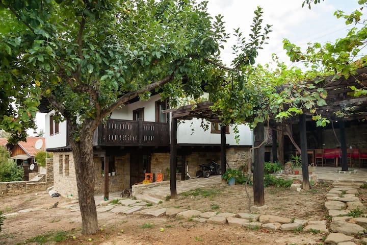 Къщата с Лозата