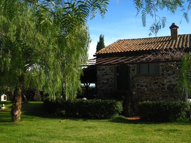 Leonico Holiday House - Mascali - Vacation home