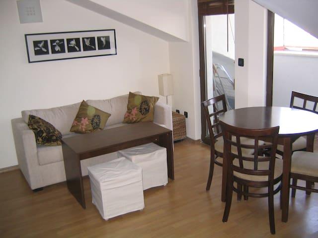Fortuna Ski Apartment (5 minute walk to lift) - Bansko - Lägenhet