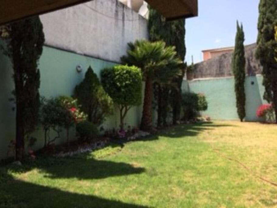 jardin al interior de la casa