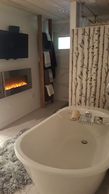 Spa room with soaker tub, fire place and flat screen T.V.