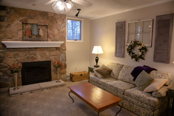 Pull out full size bed and fireplace