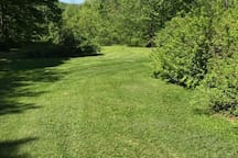 How many cartwheels in a row could you do down this yard?