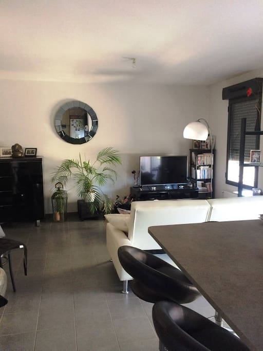 montpellier apartment overlooking private park condominiums for rent in montpellier occitanie. Black Bedroom Furniture Sets. Home Design Ideas