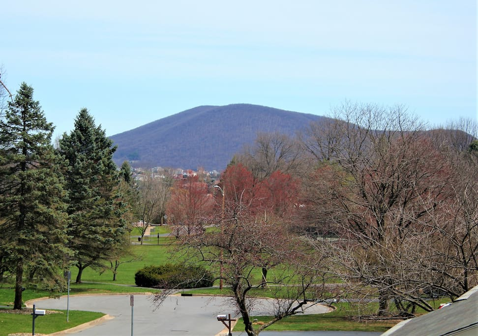 Lovely view from the front deck to Mt. Nittany and nearby Tussey View Park